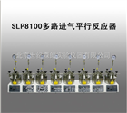SLP8100多路进气平行反应器