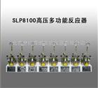 SLP8100高压多功能反应器