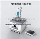 E25微型高压反应釜