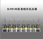 SLP8100多釜组合反应器