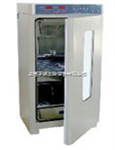 SPX-250BZ生化培养箱