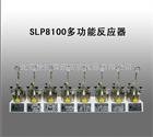 SLP8100多功能反应器