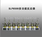 SLP8500多功能反应器