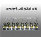 SLP8250多功能高压反应器