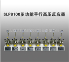 SLP8100多功能平行高压反应器