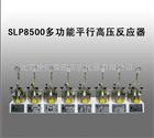SLP8500多功能平行高压反应器