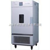 LHS-100CA恒温恒湿箱