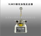 SLM25催化加氢反应器