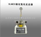 SLM25催化氢化反应器