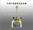 SLM25高温高压反应器