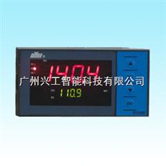DY21AV11自整定PID调节仪