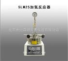 SLM25加氢反应器