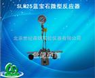SLM25蓝宝石微型反应器