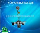 SLM500视窗高压反应器