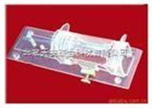 有机玻璃小白鼠固定器 透明小鼠固定器