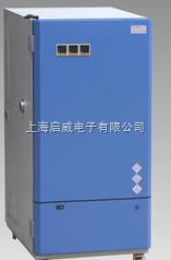 出口型综合药品稳定性试验箱