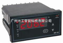 WP-C404-01-12-HHL数显表