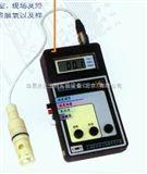 RSS-5100上海雷磁溶解氧仪