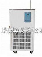 DLSB-20L(20℃-120℃)低温冷却液循环泵