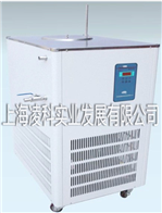 DLSB-100L(20-120℃)上海低温制冷循环泵