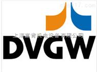 德國GSR符合DVGW認證閥門