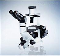 CKX41(三目)OLYMPUS奥林巴斯临床级倒置显微镜