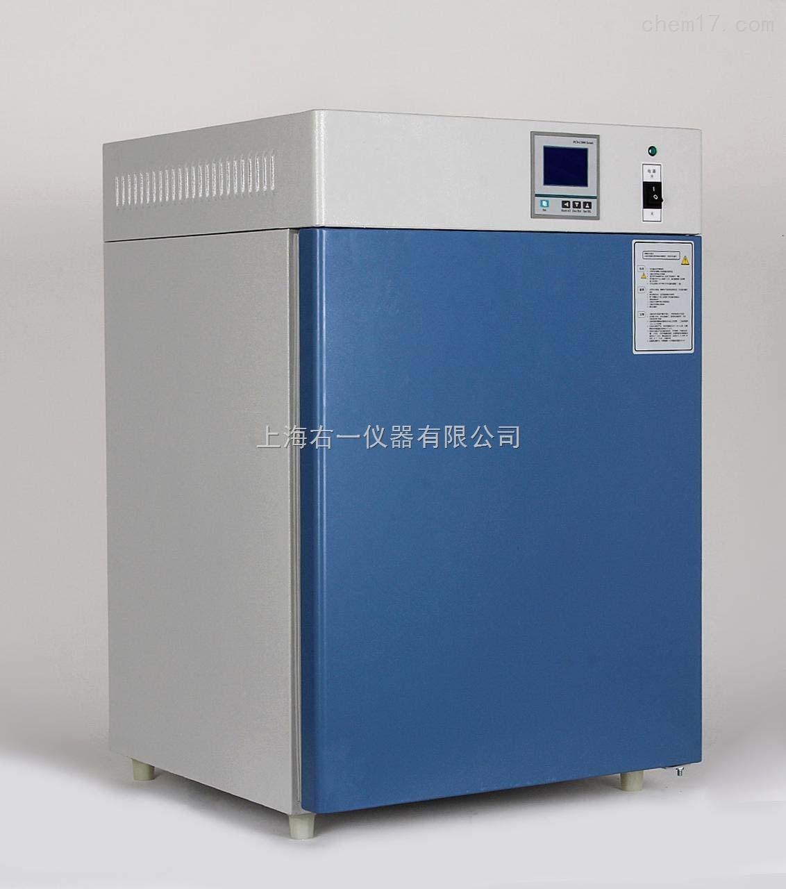 電熱恒溫培養箱DHP-9162
