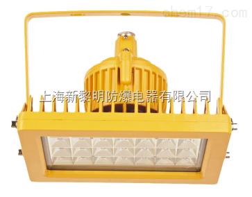 厂家直销海洋BLED9117防爆泛光灯,质量保证价格优惠