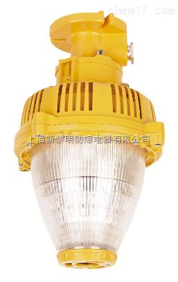 新款海洋王LED防爆灯,BLED9112防爆免维护灯