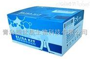 人白介素Elisa试剂盒