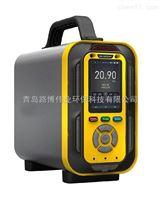 路博环保手提式复合气体检测仪可测十多种气体