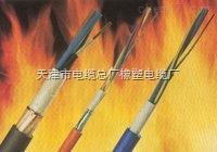 NHKVVP耐火控制电缆规格型号齐全 价格低廉