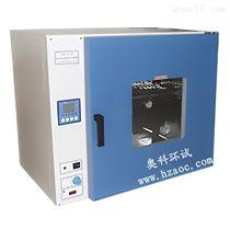DHG-9055A台式300度鼓风干燥箱