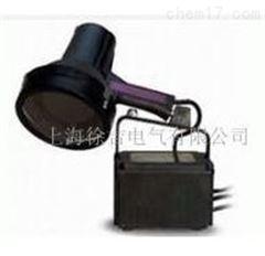 济南特价供应LDX-LY-SB-100P高强度紫外线灯