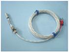 端面铂电阻WZPM-201