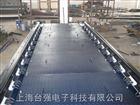 轨道衡厂家|上海台强长台面,长短组合台面轨道衡生产安装