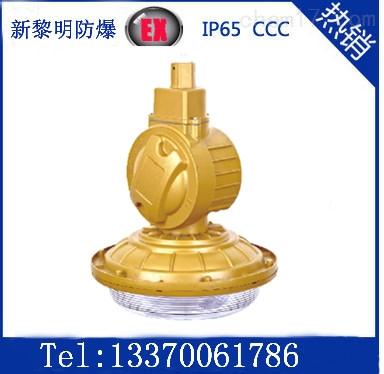 SBD1102-YQL40W免维护节能防爆泛光无极灯