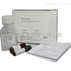 BD 556547 AnnexinV-FITC/PI细胞凋亡双染试剂盒 100T 有现货