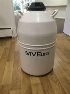MVE lab20