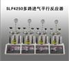 SLP4250多路进气平行反应器