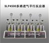 SLP4500多路进气平行反应器