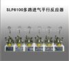 SLP6100多路进气平行反应器