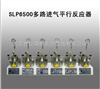 SLP6500多路进气平行反应器