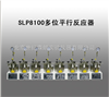 SLP8100多位平行反应器