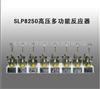 SLP8250高压多功能反应器