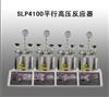 SLP4100平行高压反应器