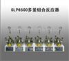 SLP6500多釜组合反应器