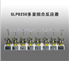 SLP8250多釜组合反应器