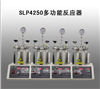 SLP4250多功能反应器
