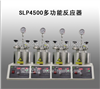 SLP4500多功能反应器